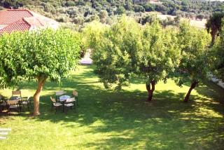 Ionis garden